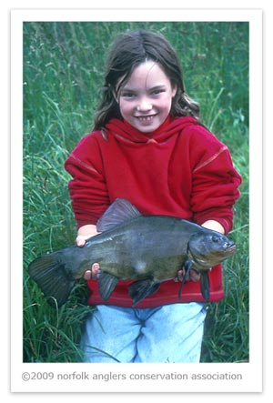 Martin's daughter gets in on the act with a good male tench