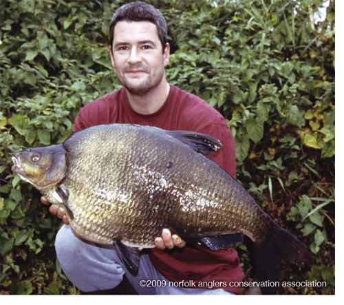 One of angling's finest feats, Tony Gibson with his hard-earned Lodge Farm bream, 18 lbs 7ozs.