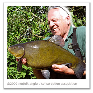 A 10 lbs 12 oz tench for Chris Turnbull from Colney Lake in early summer, 2007.